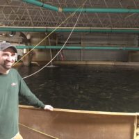 Fish Farm Changes Owners, Approach